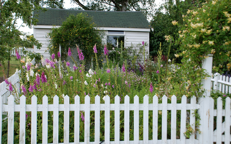 Cottage garden designer in Sussex Surrey Kent London